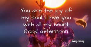 You are the joy of my soul