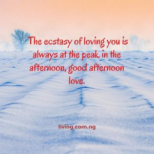 Romantic Good Afternoon Messages To Send To Your Lover Living
