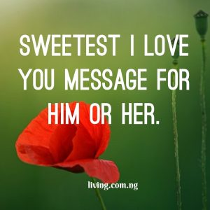 Sweetest I love you message for him/her