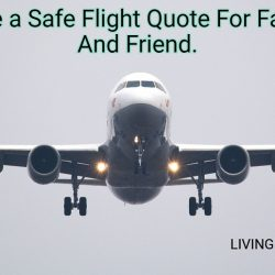 Have a Safe Flight Quote For Family And Friend.