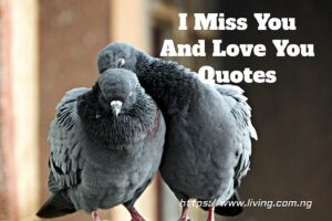 I Miss You And Love You Quotes